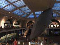 New York Museum of natural history stock image