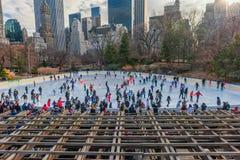 NEW YORK NEW YORK - DECEMBER 27, 2013: New York Central Park isolerade härlig kall gående is för bakgrund den ljusa naturliga åka Arkivfoton