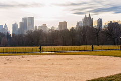 NEW YORK, NEW YORK - JANUARI 13, 2014: Central Park in NYC Cityscape op achtergrond Stock Afbeelding