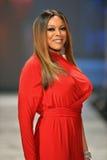 NEW YORK, NY - 6. FEBRUAR: Wendy Williams, der Kamali Kulture Wege die Rollbahn am der Inner-roten durin Sammlung Wahrheit Kleider lizenzfreie stockbilder