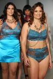 NEW YORK, NY - OCTOBER 25: Models walk runway at Finale Runway Show during Lingerie Fashion week closing benefit Stock Photos