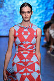 NEW YORK, NY - SEPTEMBER 07: Model Sam Rollinson walks the runway at DKNY  Spring 2015 fashion collection Royalty Free Stock Images