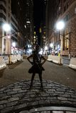 New York, NY /USA - November 23, 2018: Onverschrokken Meisje royalty-vrije stock foto's