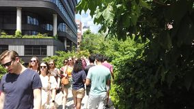 New York, NY, USA. Walking along the High Line in summer time. A famous landmark and a public park on the west side of Manhattan. Summer time stock video footage