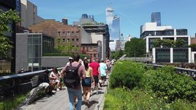 New York, NY, USA. Walking along the High Line in summer time. A famous landmark and a public park on the west side of Manhattan. Summer time stock video