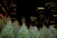 New York panorama view in christmas time Royalty Free Stock Image