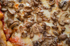 New York Pizza Pie Royalty Free Stock Image