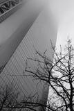 New York pluvieux - gratte-ciel et monochrome d'arbre Photos stock