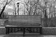 New York pluvieux - monochrome de banc de parc et de réverbère Photographie stock