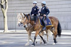 New York Police Department Mounted Unit Royalty Free Stock Photos