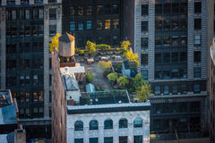 New York rooftop - Roof garden in Chelsea. Aerial view of a lovely late afternoon light flooding a midtown roof garden in Chelsea, Manhattan, NYC. Rooftop royalty free stock photos