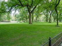 Central Park view in Manhattan Royalty Free Stock Photo
