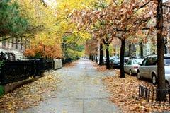 New York sidewalk. A sidewalk in Brooklyn, New York Stock Photos