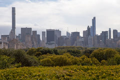 New York Skyline and Central Park. Stock Photography
