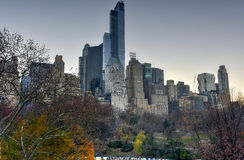 New York Skyscrapers from Central Park Royalty Free Stock Photos