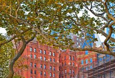 new york spring with green leaves and classic and modern architecture in lower manhattan financial district with water royalty free stock image