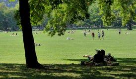 NEW YORK, STATI UNITI - 25 agosto 2016: La gente che si rilassa nel Central Park un bello giorno di estate a New York Immagini Stock Libere da Diritti