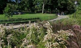 NEW YORK, STATI UNITI - 25 agosto 2016: La gente che si rilassa nel Central Park un bello giorno di estate a New York Fotografia Stock