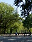 NEW YORK, STATI UNITI - 25 agosto 2016: La gente che si rilassa nel Central Park un bello giorno di estate a New York Immagini Stock