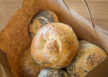 New York Style Bagels Royalty Free Stock Image
