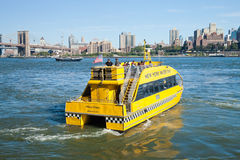 NEW YORK - táxi da água com ponte de Brooklyn Fotos de Stock