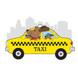 New York Taxi Dog vector illustration