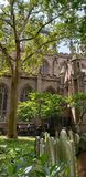 New York Trinity Church Graveyard Perspective stock images