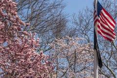 NEW YORK, U.S.A. - 14 APRILE 2018: Bandiera americana nella fioritura nel parco di primavera immagini stock