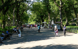 NEW YORK, UNITED STATES - AUGUST 25th, 2016:  People relaxing in Central Park on a beautiful Summer day in New York Royalty Free Stock Photos