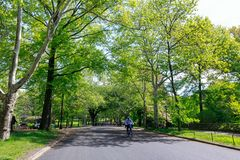 View of Central Park in New York City in spring. New york, United States - May 12, 2018 : View of Central Park in New York City in spring Royalty Free Stock Photography