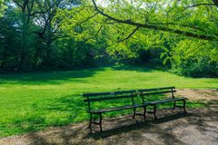 View of Central Park in New York City in spring. New york, United States - May 12, 2018 : View of Central Park in New York City in spring Royalty Free Stock Photos