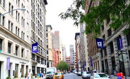 New York University Stock Photo
