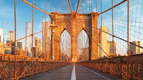 New York USA, Brooklyn bro royaltyfria bilder