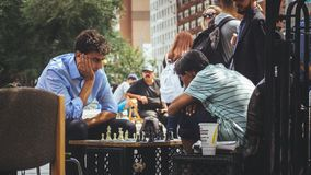 People playing chess at a park royalty free stock photo