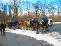 New York, USA - February 13, 2013: Horse and carriage at Central Park, New York City, USA Royalty Free Stock Image
