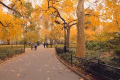 Walk in the park. Park in new york. stock images