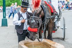 NEW YORK USA - MAJ 5, 2018: En häst- och barnvagnvagn med kusken i Central Park i New York City arkivfoto