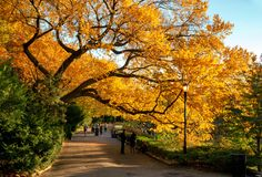Fort Tryon Park, New York City. USA. New York, USA - November 4, 2018: Fort Tryon Park, is a public park located in the Hudson Heights and Inwood neighborhoods stock photos