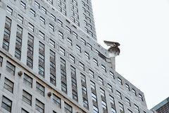 Free New York, USA, September 2, 2017: Exterior Detail Of Chrysler Building In New York. Was Built In 1931 And Was The World`s Tallest Stock Photos - 156657033