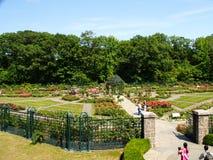 New York - Vereinigte Staaten, Peggy Rockefeller Rose Garden am botanischen Garten New York in Bronx in New York City stockfoto
