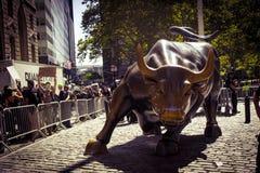 New York Wall Street Bull Stock Images