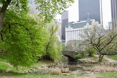 New- Yorkgarten, Central Park Stockbilder