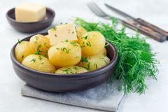 New young boiled potato topped with melted butter and chopped dill, in ceramic bowl, horizontal. New young boiled potato topped with melted butter and chopped stock image