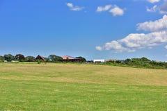 New Zea land view Stock Photo