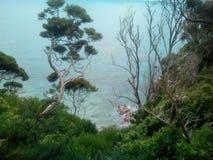New zealand. Abel Tasman treck Royalty Free Stock Photos