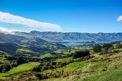 New Zealand 80 Stock Photography