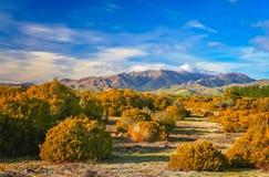 New Zealand autumn landscape Royalty Free Stock Images