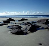 New Zealand beach. Sand beach in New Zealand stock photo