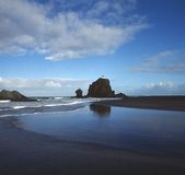 New Zealand beach. Sand beach in New Zealand stock photos