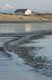 New Zealand beach scene Stock Images